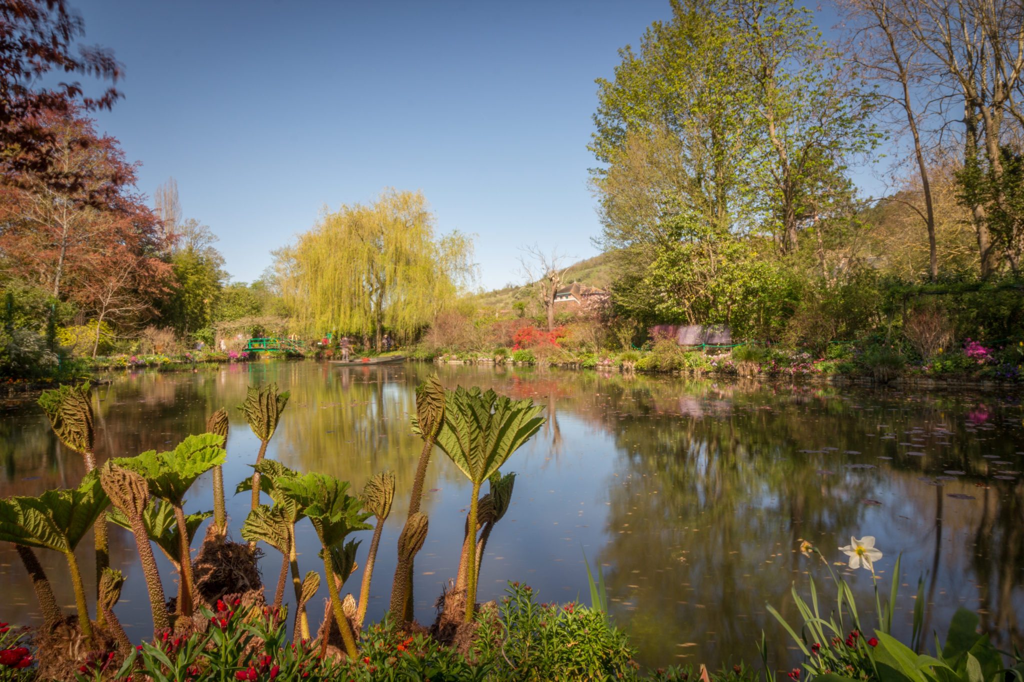 Photo of a lake at Giverny - Monet's house